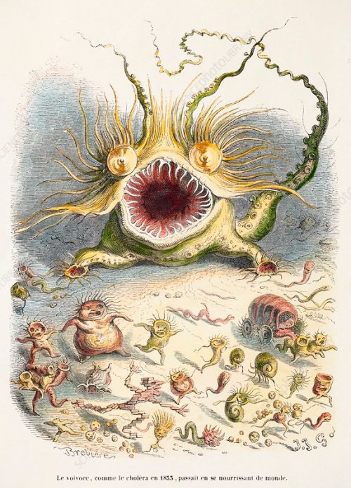 1833 Cholera Pandemic Grandville cartoon