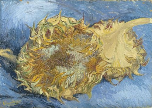 vincent-van-gogh-sunflowers-1887