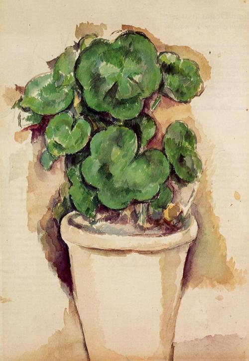 Pot of Geraniums Paul Cezanne