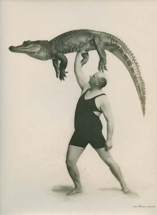 A stout man holds a full-grown crocodile aloft. he is a circus or sideshow performer.